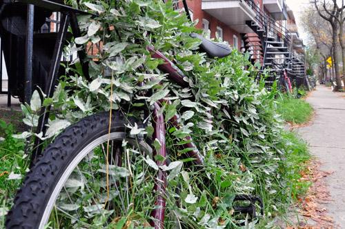 Vélo abandonné. Photo: N.Falcimaigne