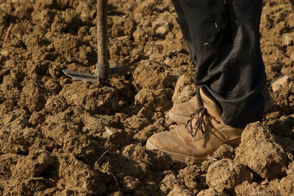 farmer-1367106_1920